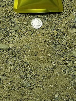 Very Rich-GOLD-Paydirt-100% Unsearched-Guaranteed-20+Gold Nuggets Added.(1/2 lb) 3