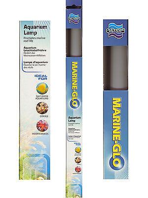 Hagen Marine - GLO Actinic Blue Fluorescent Aquarium Bulb Tube 2