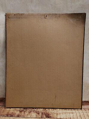 Alte Schulwandtafel Botanik C.I. L. Kny Lithografie auf Karton 8