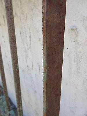 Antique Victorian Iron Gate Window Garden Fence Architectural Salvage Door #382 6