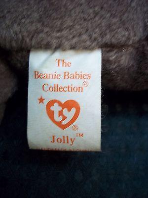 "TY Beanie Babies 7"" Walrus ** JOLLY **"