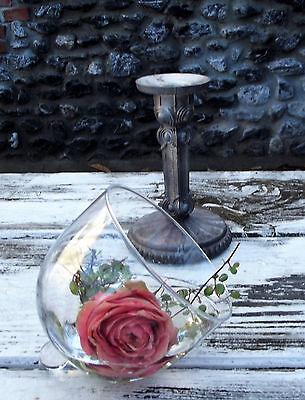 Rosenschale rosebowl Glas für Kerzenleuchter /& Kandelaber Glocke Windlicht