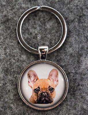 Hund Schmuck Biżuteria i Zegarki Breloki Ein