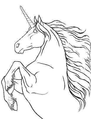 AN AMAZING WORLD of Horses 2 Mystical Unicorns Pegasus Adult ...