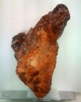 A Tool with faces. Paleolithic period. Museum Level. Jordan Rift Valley.506gr'