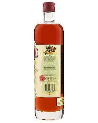 Tempus Fugit Gran Classico Bitter bottle Miscellaneous 750mL 4