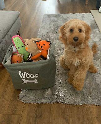 ROSEWOOD FOREST CANVAS Bag | Pet Dog Toy Carrier | Basket