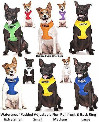 Dog Bandana Best Quality Price Personalised Message Neck Scarf Fashion Accessory 3