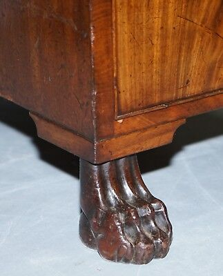 Exquisite Regency Period 1815 Mahogany Kneehole Desk With Lion Hairy Paw Feet 5