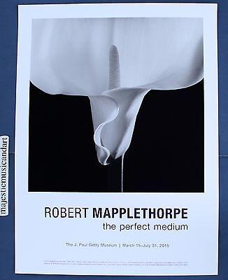 V-129 Mapplethorpe Canvas Poster Photographer Robert Mapplethorpe Movie 24x36