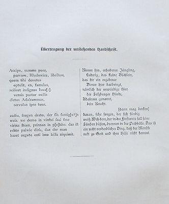 1897 EINE SEITE AUS DEM MUSPILLI antiker alter Druck antique print
