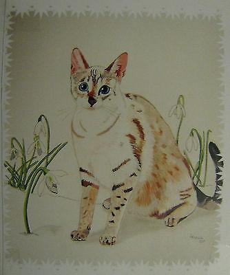 "C25     Original Acrylic Painting By Ljh     ""Javanese""       Cat Kitten 5"
