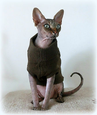 sizes Winter sweater coat top for a Sphynx cat - cat clothes Katzenbekleidung 2