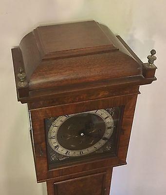 Elliott WESTMINSTER CHIME Burr Walnut Grandmother Miniature Grandfather Clock 12