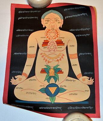 7 Original Mandalas Tibetische Medizin Buddha Thangkas Medicine Anatomie Erotik