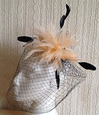 nude feather black veiling fascinator millinery hair clip ascot wedding bridal 3