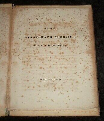 Das Hirn des Negers ,Original von 1837 , Friedrich Tiedemann 7