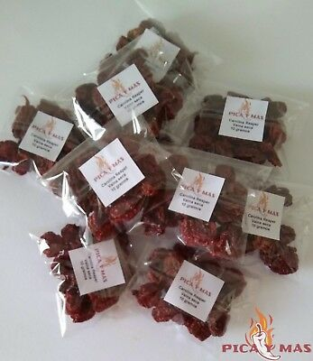 Carolina Reaper Chilli Pods - Worlds Hottest Chilli - 100% Reaper 10g 2