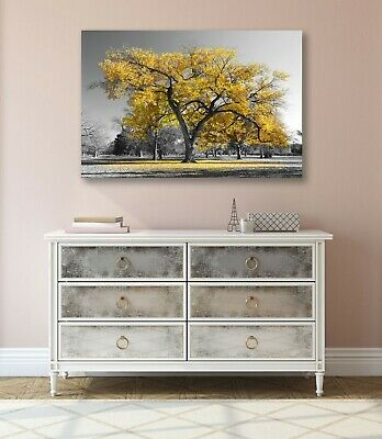 Large Tree Yellow Leaves Black White Canvas Wall Art Picture Print 30mm Deep 3