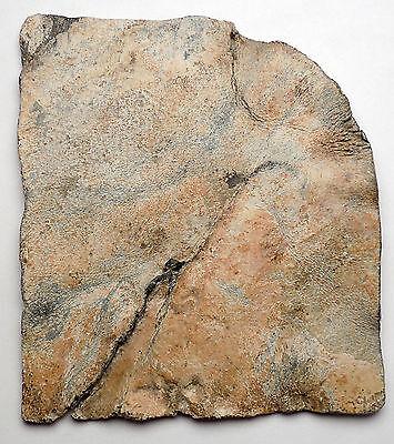 Ancient Roman Lead Plaque Sol Invictus Dioscuri Altar Dolphin Horse i44983 7