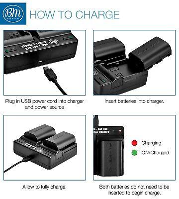 BM 2 LP-E6N Batteries & Dual Charger for Canon EOS-R 60D, 70D EOS 80D C700 XC15 4