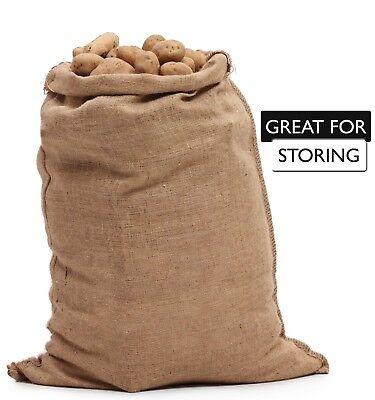 5 Burlap Sacks- Potato Sack Race Bags, Sandbags, Gunny Sack 22x36, Fish Bag 5