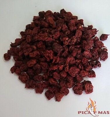 Carolina Reaper Chilli Pods - Worlds Hottest Chilli - 100% Reaper 10g 3
