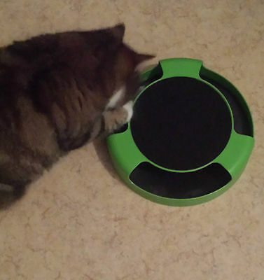 Catch The Mouse Motion Moving Cat Scratch Pad Toy Claw Care Mat +Free Catnip 3