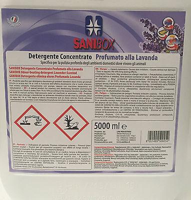 Sanibox in tanica da 5 litri detersivo igienizzante detergente pulizia pavimenti 3