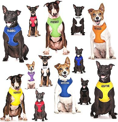 Padded Waterproof Adjustable Pet Puppy Dogs Non Pull Soft Vest Harness or Sets 10