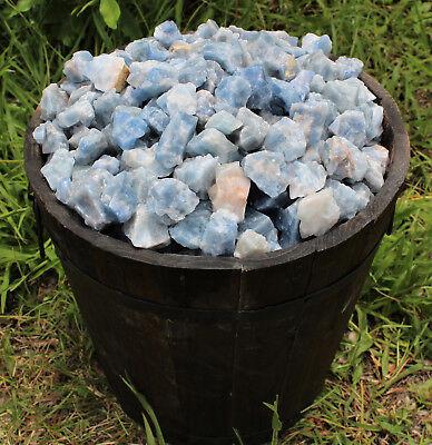 Bulk Wholesale Lot: Rough Blue Calcite 2 lb Crystal Healing Chakra Raw Chunks 3