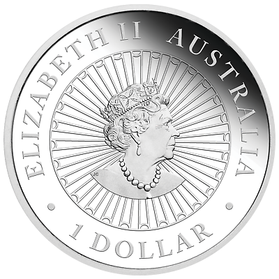2019 Australia OPAL LUNAR Year of the PIG 1oz Silver Proof Coin NGC PF70 UC ER 6