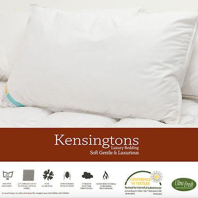 Quanto Costa Un Piumino D Oca Matrimoniale.Kensingtons 2 X Piuma D Oca Piumino Lusso Qualita Hotel Cuscino