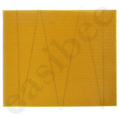 National Bee Hive Deep Brood Wired Wax Foundation Sheets Beekeeping Beehive 2