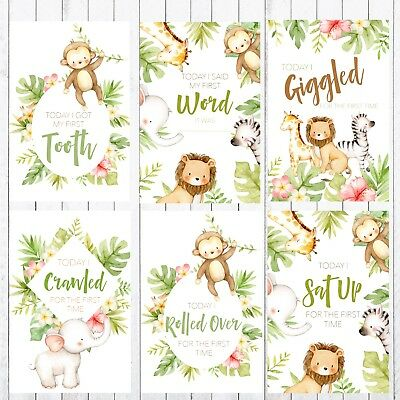 Baby Milestone Cards, 4x6 Photo Prop, 32 cards, Safari, Jungle Animals 3