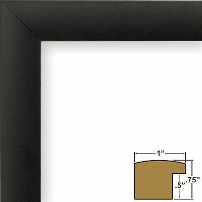 CRAIG FRAMES COMPLETE 7x12 CD Display Black Frame with Glass, White ...