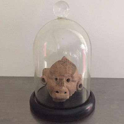 Mexico, Mayan, Tikal, c. 550-900 AD., Monkey head fragment, 1.75 in. Height 3