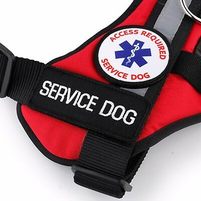 ALL ACCESS CANINE™ Service Dog - ESA Dog - Therapy Dog Vest Waterproof Harness 9