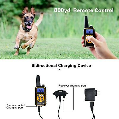 Dog Shock Training Collar Rechargeable Remote Control Waterproof IP67 875 Yards 4