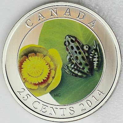 2014 /'Water Lily and Leopard Frog/' Colorized 25-Cent Coin Oversized 13875