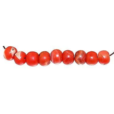 (2362) Bracelet of Pema Raka Nan Hong Beads   楠香串珠 4