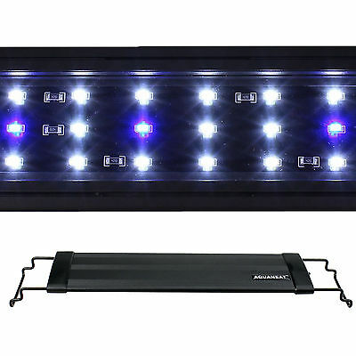 LED Aquarium Light 0.5W Plant Marine FOWLR Blue & White 2