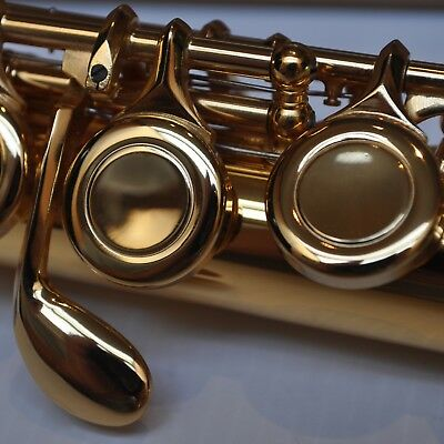 FLUTE 24k Gold-Plated 16 Key C-Foot  • BRAND NEW • Student or Intermediate • 6