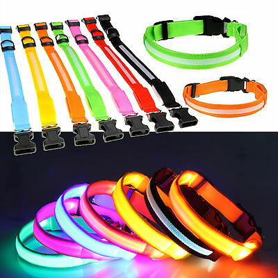 LED Glow Collar 3 Sizes Dog Puppy Pet Tag Flashing Light Leash Battery Included