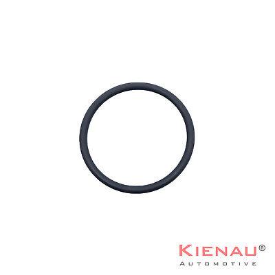 O-Ring Set Kit Dichtung für BMW Magnetventil Steuerventil Vanos N40 N42 N45 N46 6