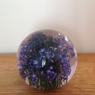 FORGET ME NOT PAPERWEIGHT With Real Forget Me Not - Collectable Country Gift Art 4