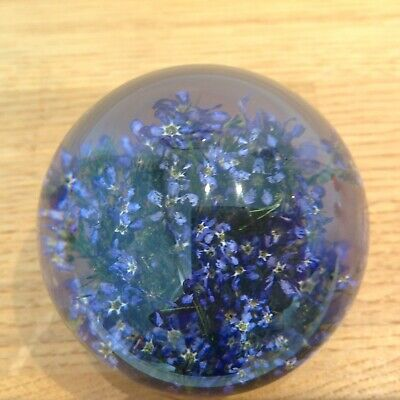 FORGET ME NOT PAPERWEIGHT With Real Forget Me Not - Collectable Country Gift Art 2