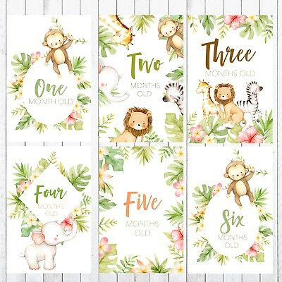 Baby Milestone Cards, 4x6 Photo Prop, 32 cards, Safari, Jungle Animals 2