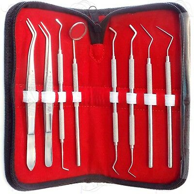 Hygienist Dental Examination Kit Plaque Remover Tartar Scraper Probe Tweezer 3