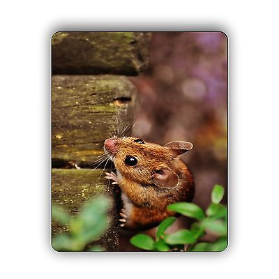 Mouse on the Fence Computer Mouse Pad Size Mousepad 2